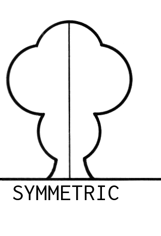 johnbarsbyphotography symmetry and asymmetry